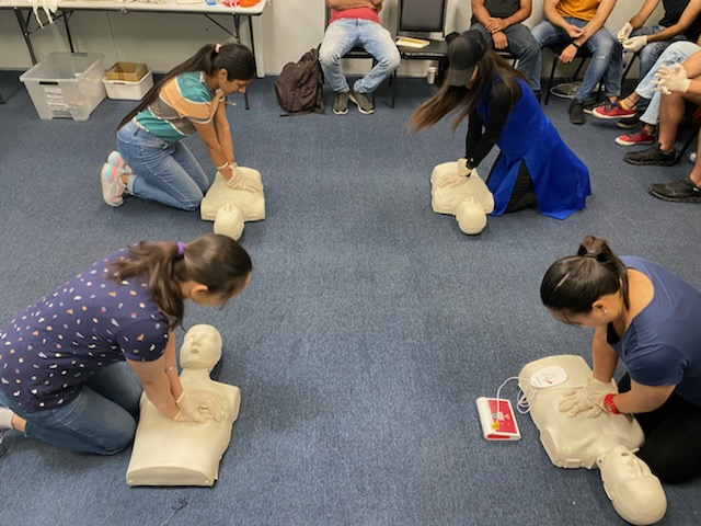 HLTAID011 First Aid training